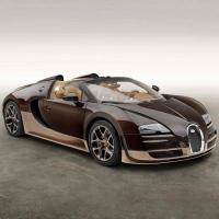 Bugatti Veyron Rembrandt Edition 2014 года – эксклюзивная модель