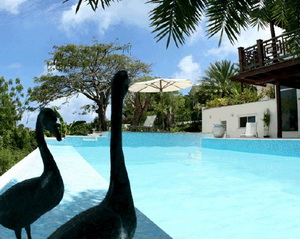 Date Palm Villa - вилла в тропическом раю