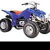 Квадроциклы: модный гибрид джипа, мотоцикла и трактора