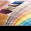 Как правильно подобрать цвет для своего дома?