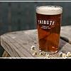 Эль – пиво в английских традициях