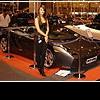 Lamborghini (Ламборджини) - прирученный дикий зверь