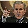 Миллионы семейства Буш