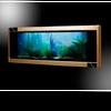 Панорамные аквариумы: со всех сторон