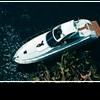 Круизные катера: на воде большой компанией