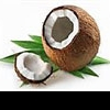 Кокос: лохматый орех